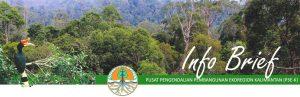 Read more about the article Info Brief – Peta Daya Dukung Sumber Daya Alam Dan Lingkungan Hidup: Instrumen Utama Pengendalian Pembangunan Kalimantan