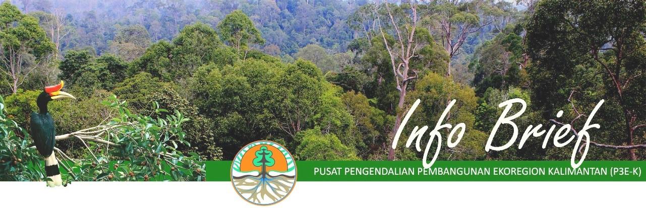 """Read more about the article Info Brief – Kisah Gajah """"kurcaci"""" Kalimantan (Utara)yang terancam punah"""